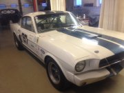 Rolkooi: Shelby GT 350